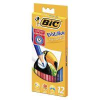 Lápis de Cor BIC Evolution 12 cores - Cod. 70330428584