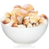 Funghi Italiano Porcini 1Kg - Cod. 8005490372905