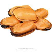 Mexilhão Desconchado Ria Austral 10kg - Cod. 7898466015280